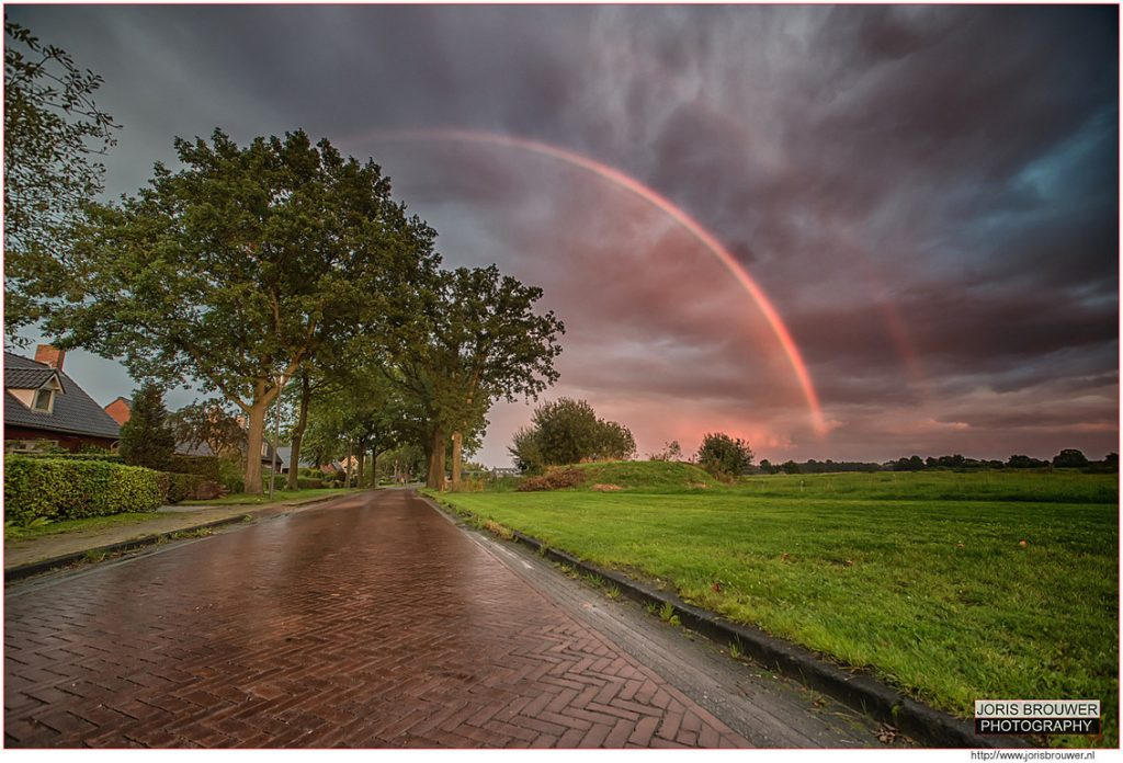 laan met bomen en regenboog