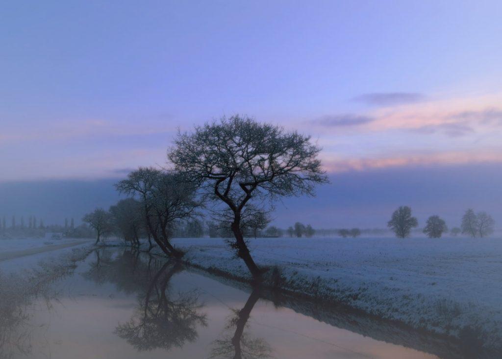 mistig veld met bomen en sloot in paars-blauwe lucht